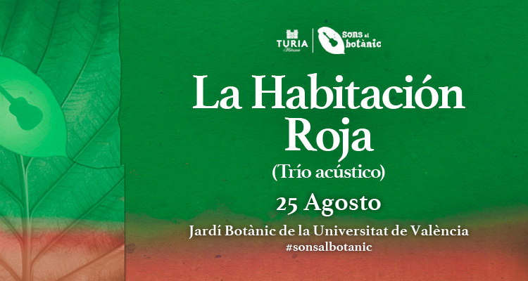 Concierto de música en València