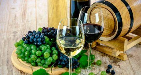 fiera dei vini e dei prodotti tipici della comunità valenciana