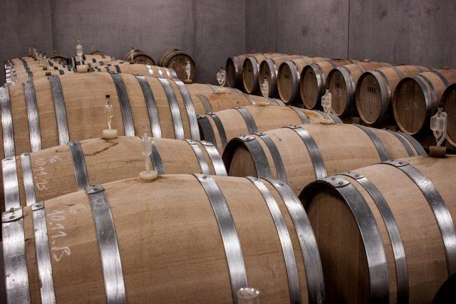 Wine tour in Valencia