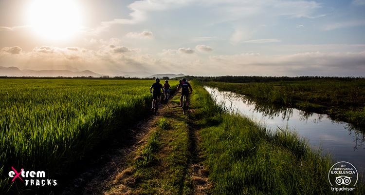 Parque marjal Pego-Oliva ruta en bicicleta